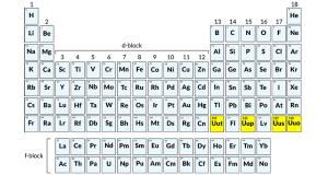 nee elements